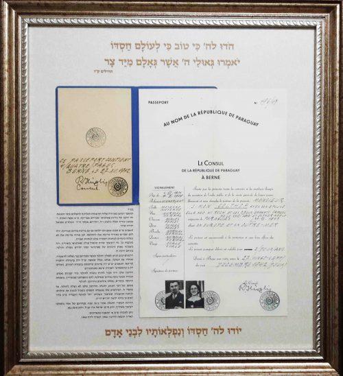 <p>The original Paraguayan passport of the Colthof family</p>