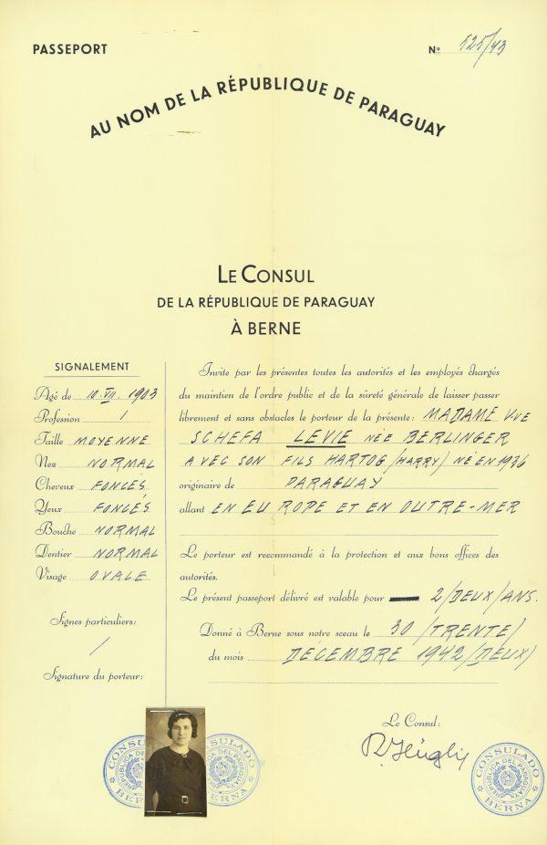 <p>Passport for Schefa Levie<br /> <small>Auschwitz-Birkenau State Museum, ZWEiss3 no. 194773</small></p>
